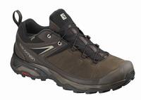 Παπούτσια Salomon X-Ultra 3 LTR GTX Brown 404785