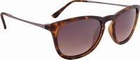 Γυαλιά Alpina Zaryn Glasses Havana MattA8613.3.91 (8-10-125-036)
