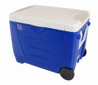 Φορητό Ηλεκτρικό Ψυγείο Με Ρόδες Polar King Evercool 45Lt Blue 31115