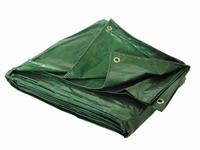 Μουσαμάς PE Unigreen  2,5m x 3,5m Green 11308